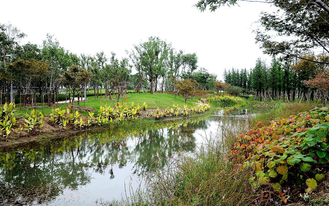 云杉湖公园 苏州阳澄湖半岛旅游度假区